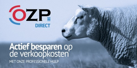 OZP Direct 2019