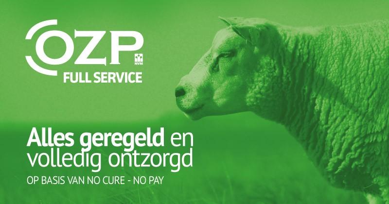 OZP Full Service